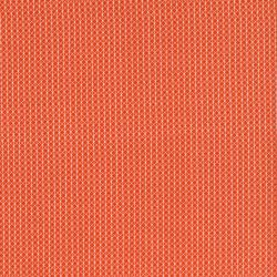 C5000-005 Cotton + Steel Basics - Netorious - Roadster Fabric