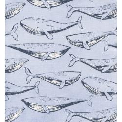 C5097-002 S.S. Bluebird - Fred And Carrie - Cloud Unbleached Cotton Fabric